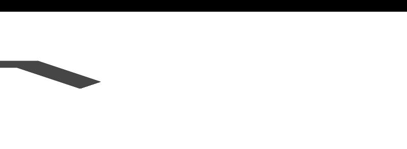 zirzamin-logo-light-800